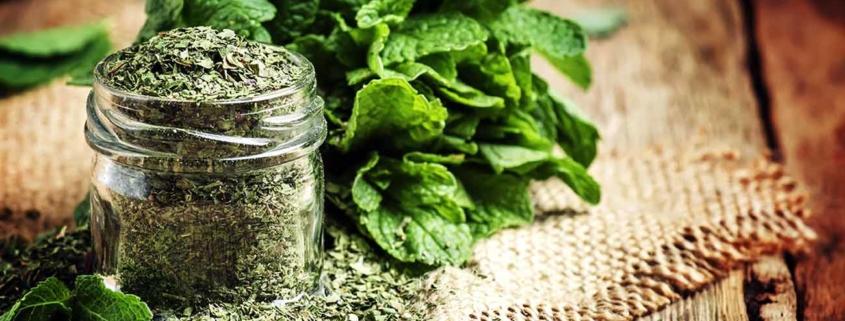 عطاری وب فروشگاه اینترنتی گیاهان دارویی- سبزی خشک